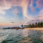 Ngôi nhà của các loài động vật quý- Nam đảo Ngọc: Tiên phong cuộc sống vững bền
